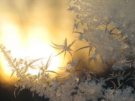 Frost in a window by Garbuend