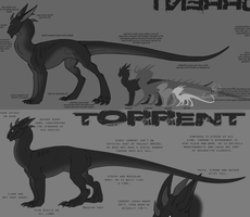 the evolution of torrent by annicron