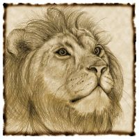 Lion of the Tribe of Judah by OhioArt2