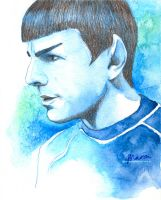 Spock by MariaBruggeman