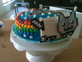 Nyan Cat Cake by misslillypilly