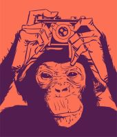ape and camera by ben35dan
