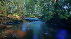 Up the stream by ShinyphotoArt