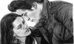 And so the lion fell in love by girlinterruptedbyart