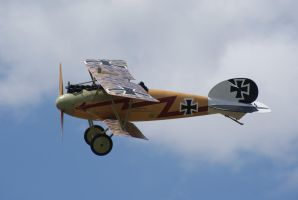 Albatros D.Va reproduction by Valder137