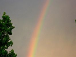 Rainbow Closer View by neice1176
