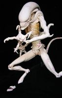 Alien warrior maquette by David Field. by davidfield