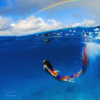 Rainbow by Vitaly-Sokol