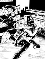 Daredevil Nightwing Commission by BrianAtkins