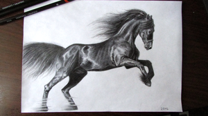Friesian horse sketch by Bra1nEater