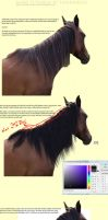 Mane Tutorial by TayaRavena