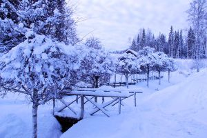 winter bridge stock 2 by conceptually
