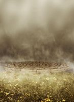 Foggy Grass BG 03 by the-night-bird