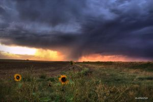 Brewing Storms on the Plains by MtnMama