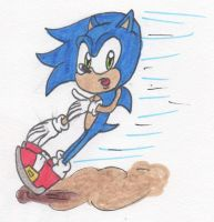Sonic Skids to a Stop by Piplup88908