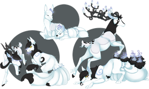 PKMNation: The princes's heirs by CatLuvsCookies