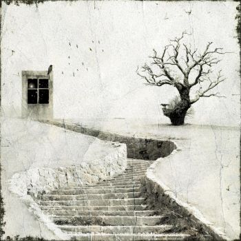 stairway to heaven by fragilemuse-org
