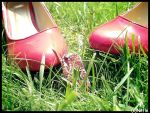 Shoes with star by Nefle