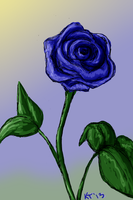 Blue Rose by Filly8