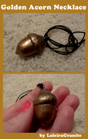Emergency Acorn Necklace by Laleira-Granite