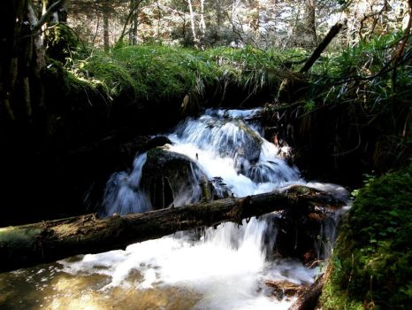 Glenmalure by forever-green
