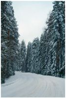 Snowy Road by xuvi