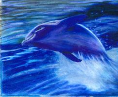 dolphin by cokeglass