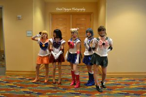 Sailor Moon Characters by davidnguyen408
