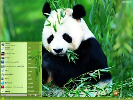dzArt panda Vista themes by DZart