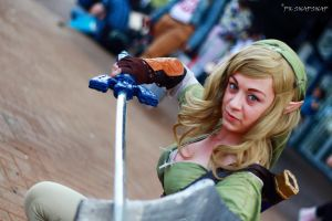 Little Lion Cosplay - Lady Link 7 by Mr-PKSnapSnap4078