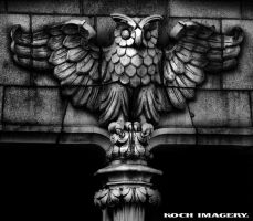Owl Architecture by Eturnaldesign