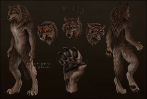 Wolfy Reference sheet by Sidonie
