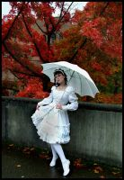 The Ravishing Lady of Fall by PorcelainPoet
