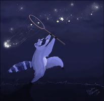The Raccoon that stole the Sky by arab-artist