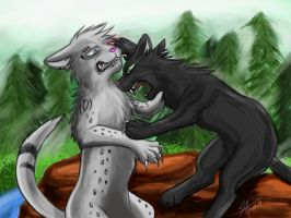 Warriors: Hollyleaf vs Ashfur by Marshcold