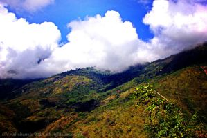 Countryside around Munnar by vharishankar