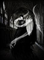 .:the haunted:. by natyismyhero