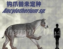 Ancylotherium sp. by sinammonite