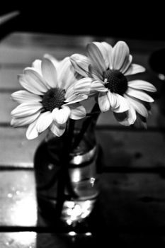 flowers BW by killemalltatlim
