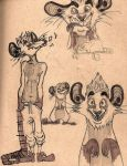 male possums don't have pouches by starfishyy