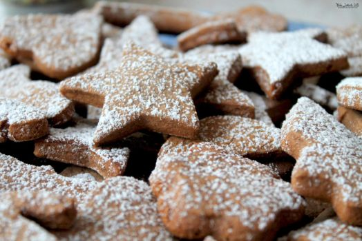Ginger cookies 03 by Paalinka