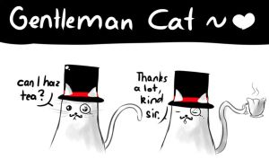 Gentleman Cat by miSsSasoRi