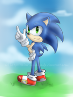OHS 01 - Sonic by Hey-its-Jess