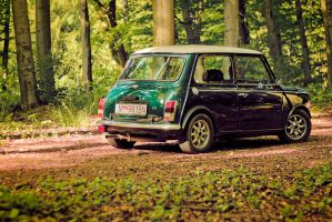 Mini.. by lococso