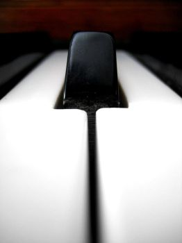 One Note by AyalaPhotography