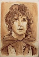 Pippin by SallyGipsyPunk