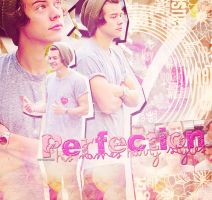 +PerfectionsNameIsHarryStyles by NishiLuvsYou