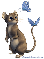 Butterfly Mouse by Avanii