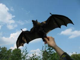 Flying fox doll by Jerseydays