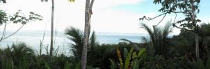 Panorama from Lapa Rios by wkdown